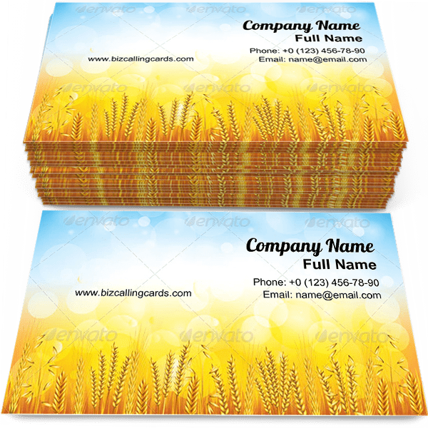 Sample of Beautiful Wheat Field business card design for advertisements marketing ideas and promote growth harvest branding identity