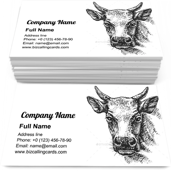 Sample of Cow Head Sketch calling card design for advertisements marketing ideas and promote agriculture branding identity