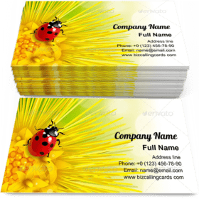 Floral with Lady Bug Business Card Template