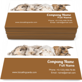Group of bunnies Business Card Template