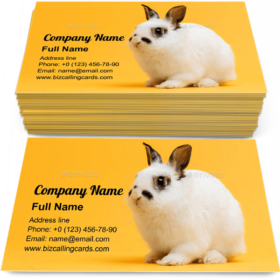 Little bunny sitting Business Card Template