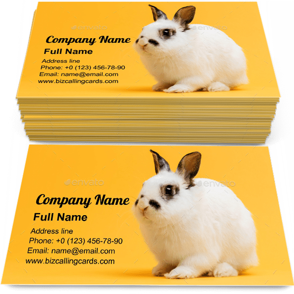 Sample of Little bunny sitting business card design for advertisements marketing ideas and promote Domestic animal branding identity