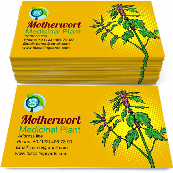 Sample of Motherwort Medicinal Plant calling card design for advertisements marketing ideas and promote botany shop branding identity