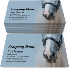 Muzzle of Grey Horse Business Card Template