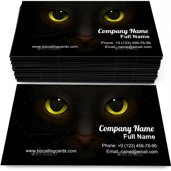 Sample of Scary Cats Snout calling card design for advertisements marketing ideas and promote kitten branding identity