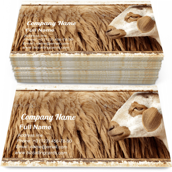 Sample of Wool sheep in farm business card design for advertisements marketing ideas and promote wool farm branding identity