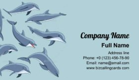 Set of Dolphins Business Card Template