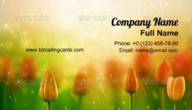 Summer Rain Business Card Template