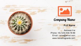 Cactus plant in flower pot Business Card Template