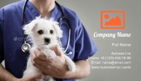 Veterinarian Doctor Business Card Template