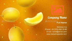 Honeydew Melon Sweet Fruits Flavour Business Card Template
